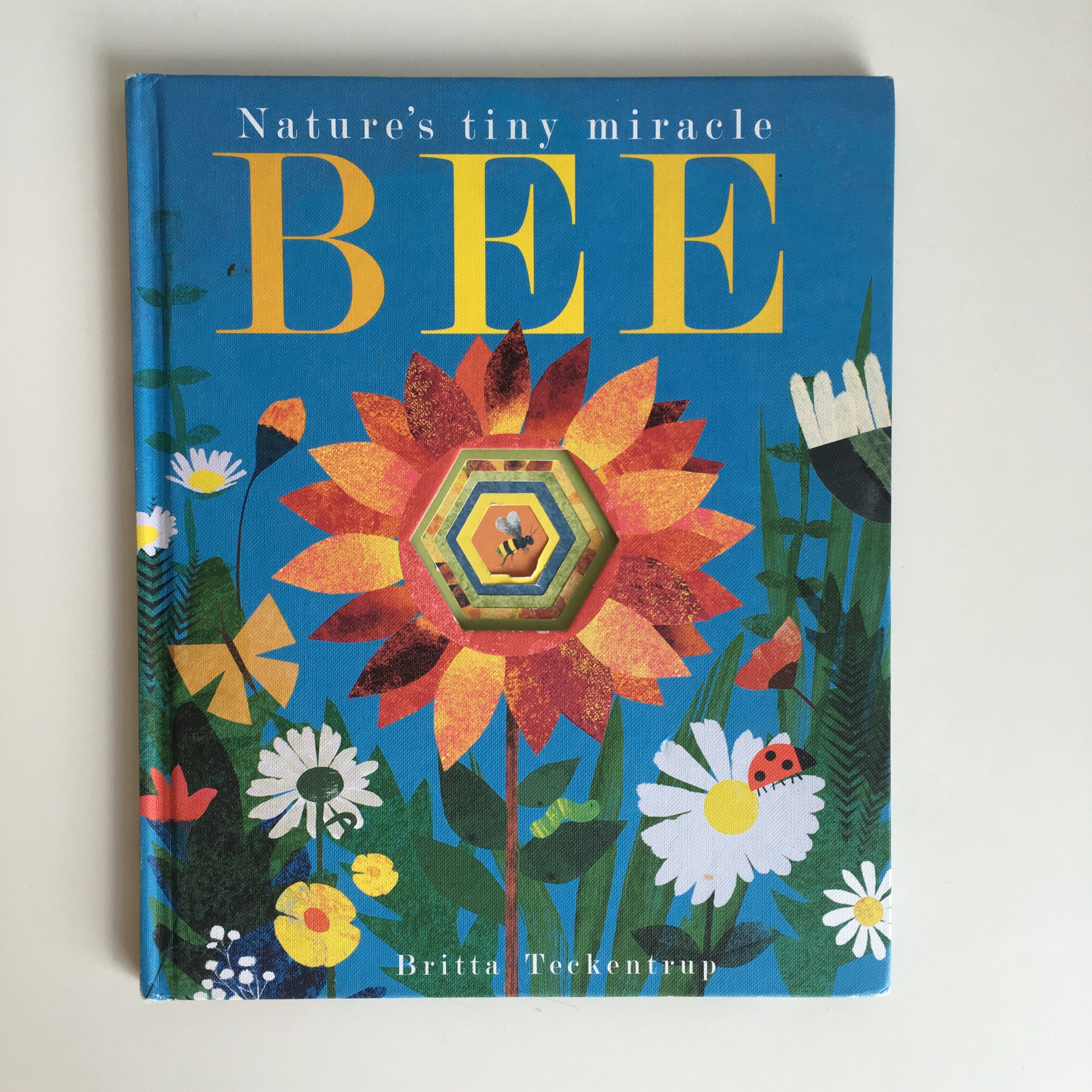 18 24 months frida be mighty bee britta teckentrup amipublicfo Image collections